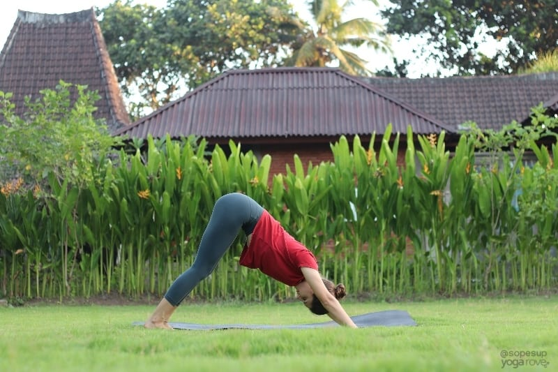 Yoga Poses for Beginners: Downward Facing Dog