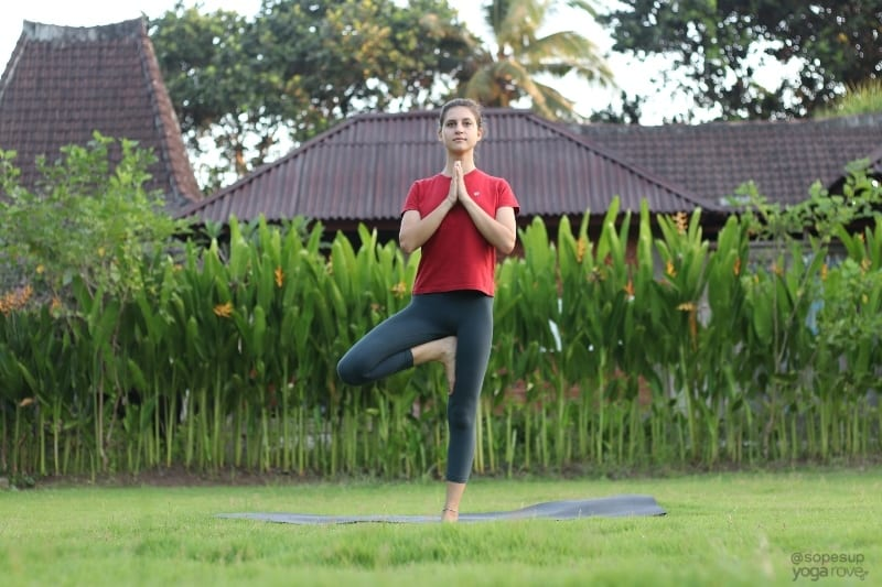 Yoga Poses for Beginners: Tree Pose