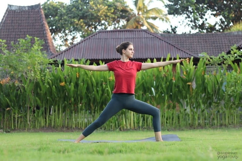 Yoga Poses for Beginners: Warrior II