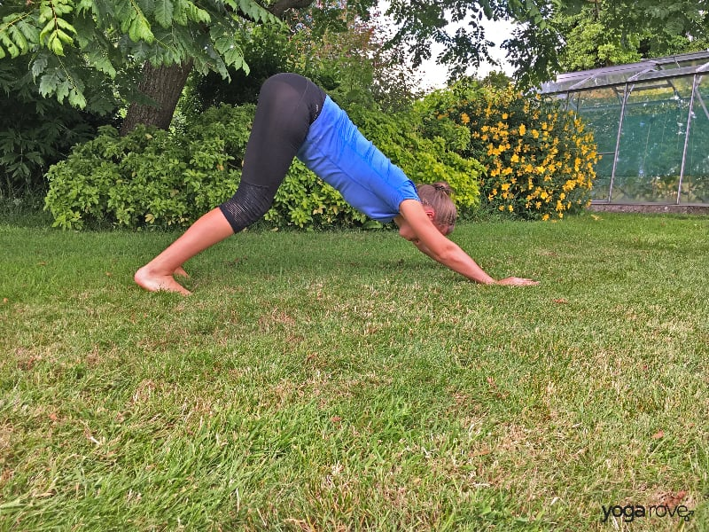 Yoga Poses for the Core- Downward Dog