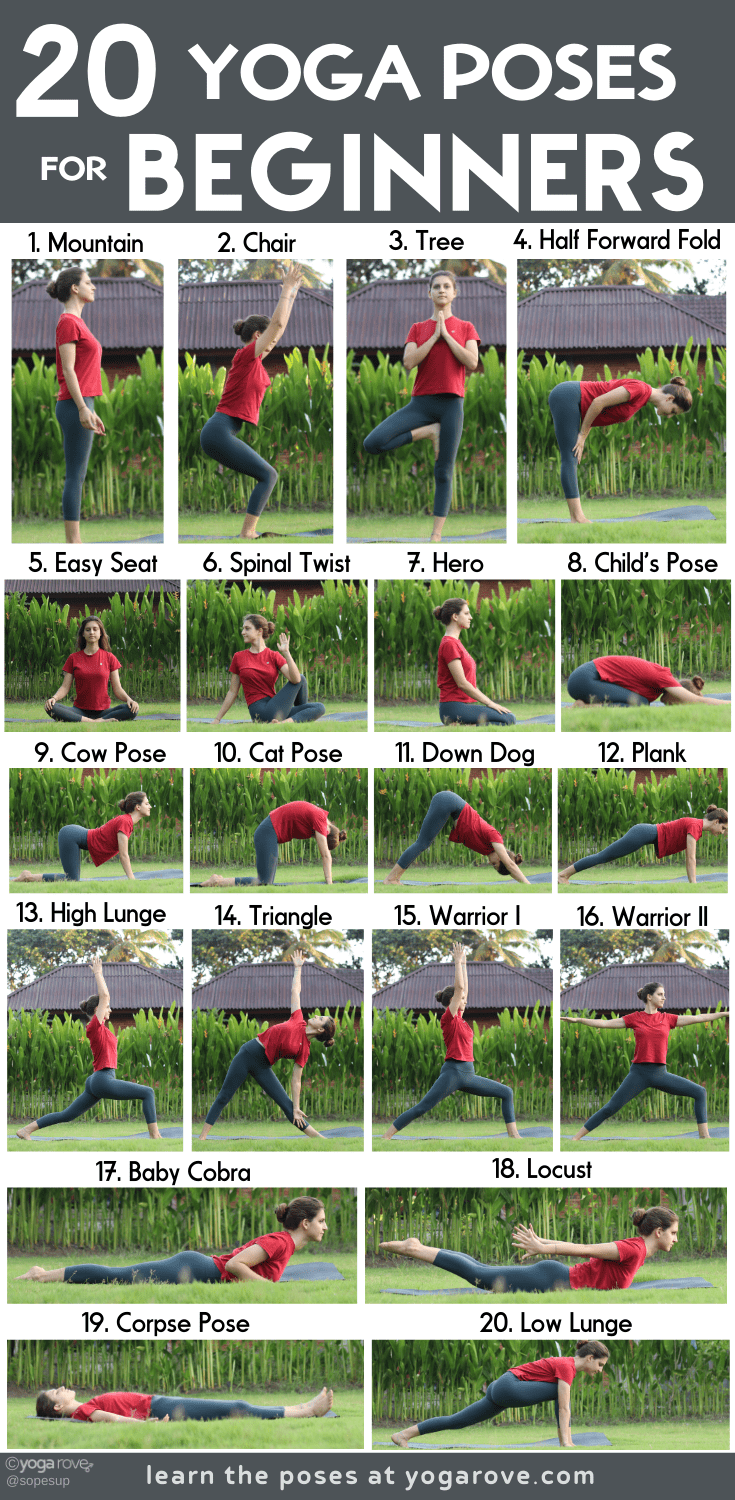 40 Yoga Poses for Complete Beginners (+ Free Printable)  Yoga Rove