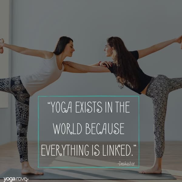 yoga quotees about connection to others