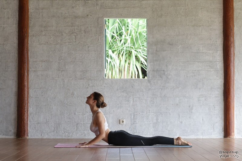 Yoga Poses for Flexibility- Cobra Pose