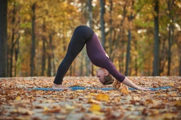 Autumn Yoga Flow- Downward Facing Dog