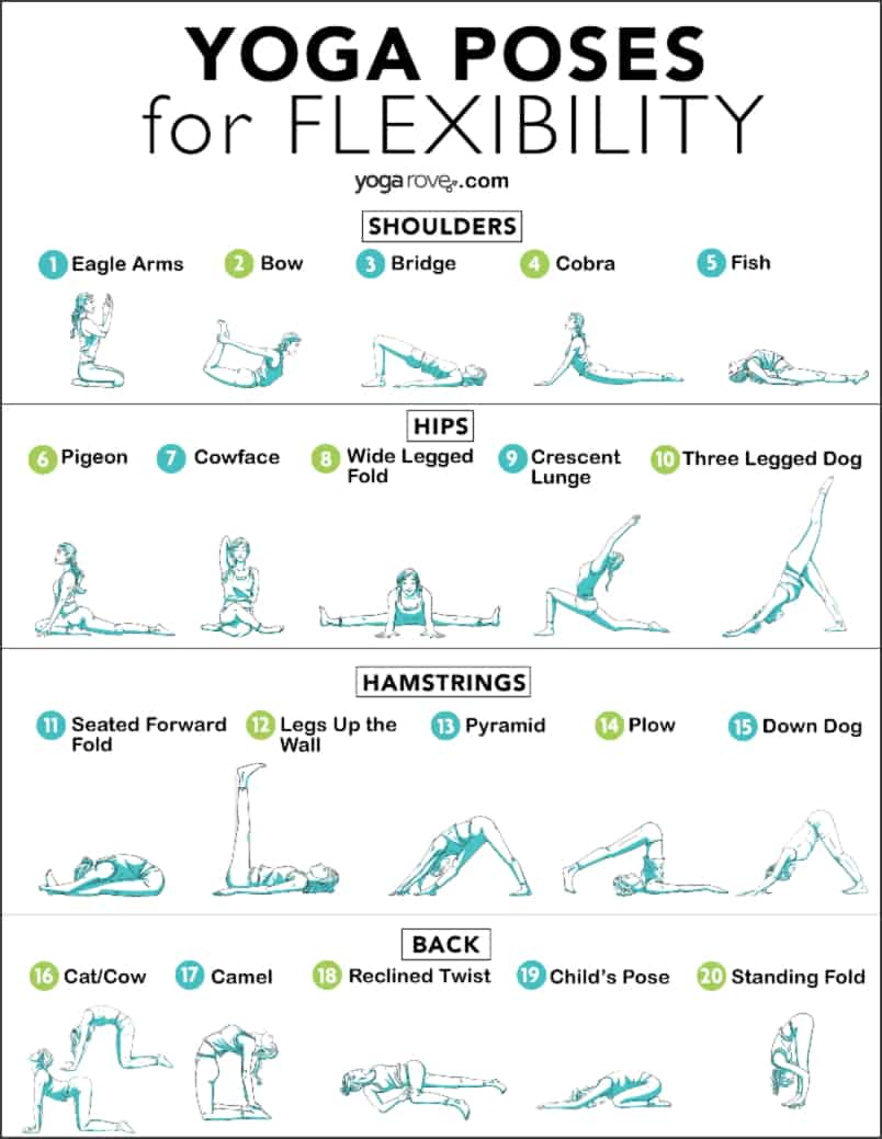 Yoga Poses for Flexibility Printable