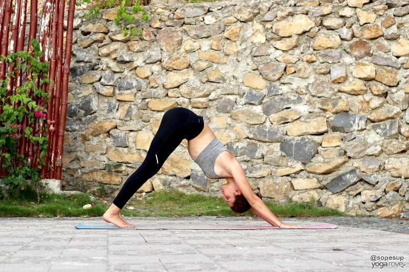 Downward Facing Dog- yoga to practice everyday