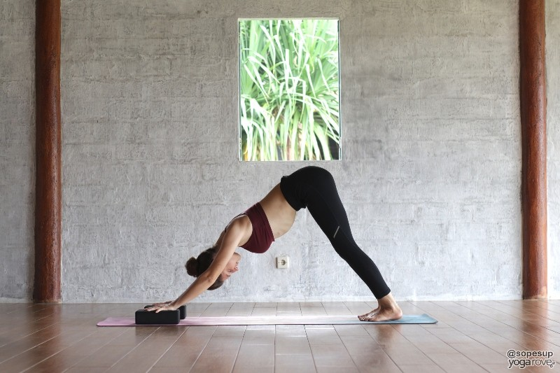 practicing downward facing dog with yoga blocks under hands