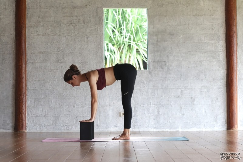 Standing Forward Fold- Yoga Blocks