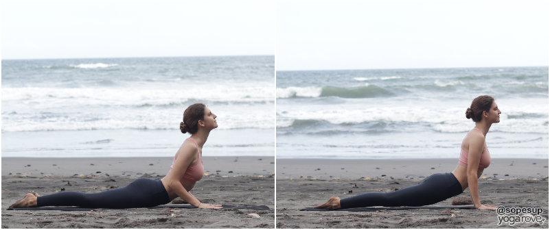 yogi practicing sun salutation a- cobra/up dog