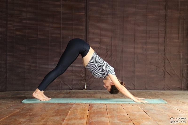 yogi practicing downward facing dog for chaturanga prep
