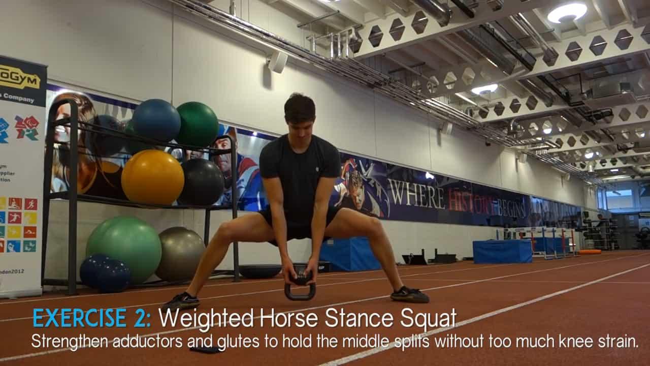 horse stance squat pose
