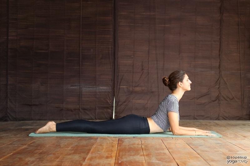 yogi practicing sphinx for chaturanga prep