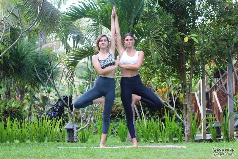 two yogis practicing tree poses- partner yoga