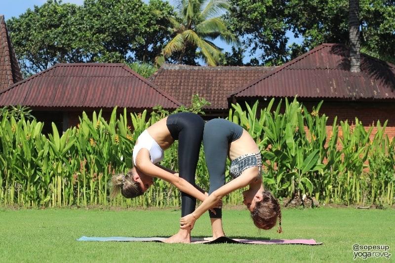 two yogis practicing standing forward fold- partner yoga