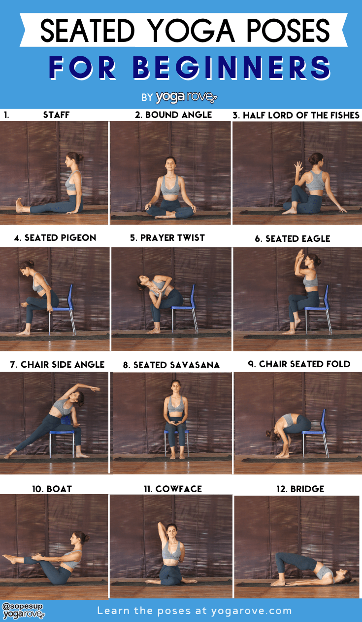 seated yoga poses for beginners infographic