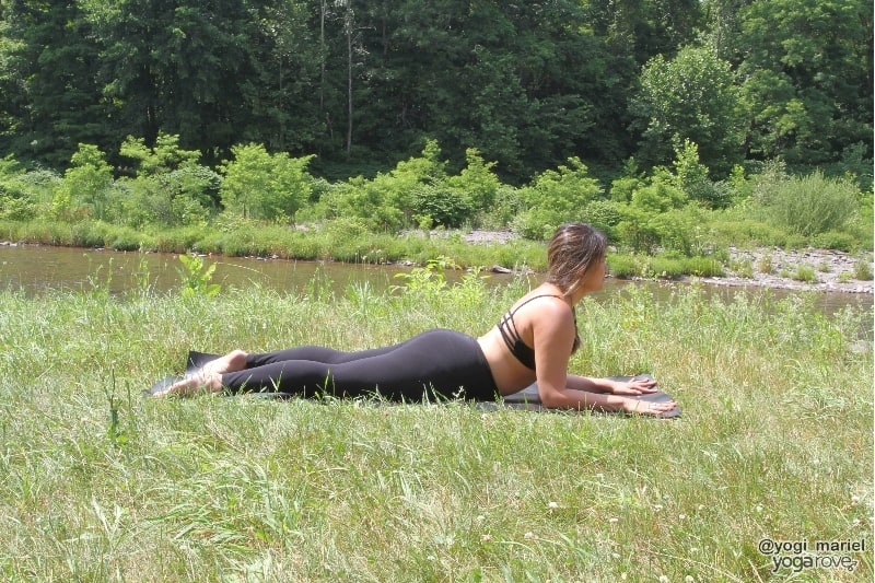 sphinx pose- yin yoga sequence
